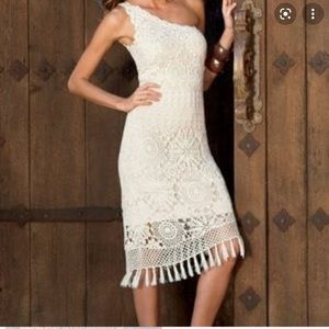 🌻 Boston Proper Crochet One Shoulder Cream Dress